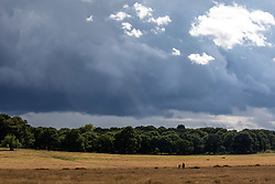 © Licensed to London News Pictures. 24/08/2020. London, UK. As families enjoy the mild temperatures this afternoon in Richmond Park, dark clouds loom over South West London as forecasters warn that Storm Francis is set to batter the UK later tonight with winds in excess of 50mph along with heavy rain. The Met Office has issued a yellow weather warning for high winds for most of the country which could lead to travel disruption and damage to trees. Photo credit: Alex Lentati/LNP