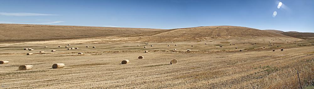 Panorama of a vast western hayfield.