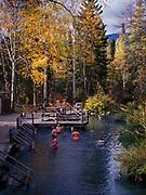 Thermal bathers enjoying pool at Liard River Hot Springs Provincial Park, northern British Columbia, Canada.