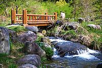 Hiking Trail in Shin Hodaka