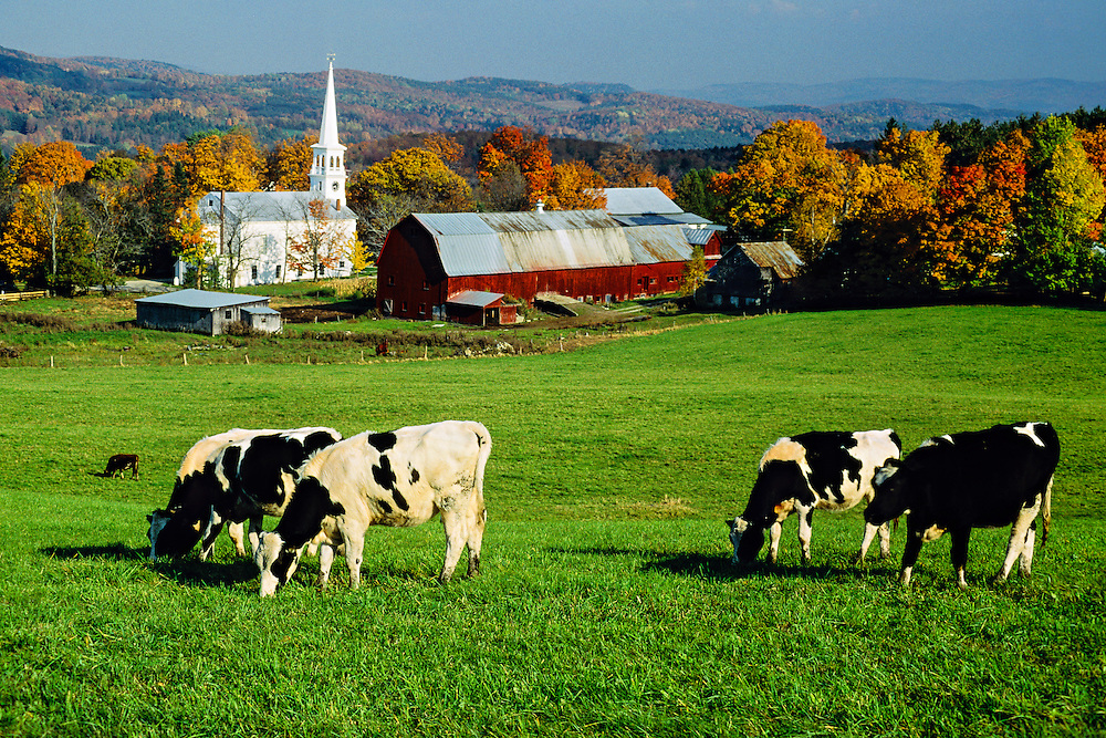 Autumn view, Peacham, Vermont USA