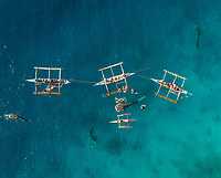 Aerial view of tourists swimming with whale sharks, Oslob, Philippines.