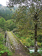 Turkey, Trabzon Province, old stone bridge