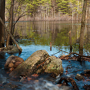 Small stream entering pond in Harold Parker State Forest, Andover, MA