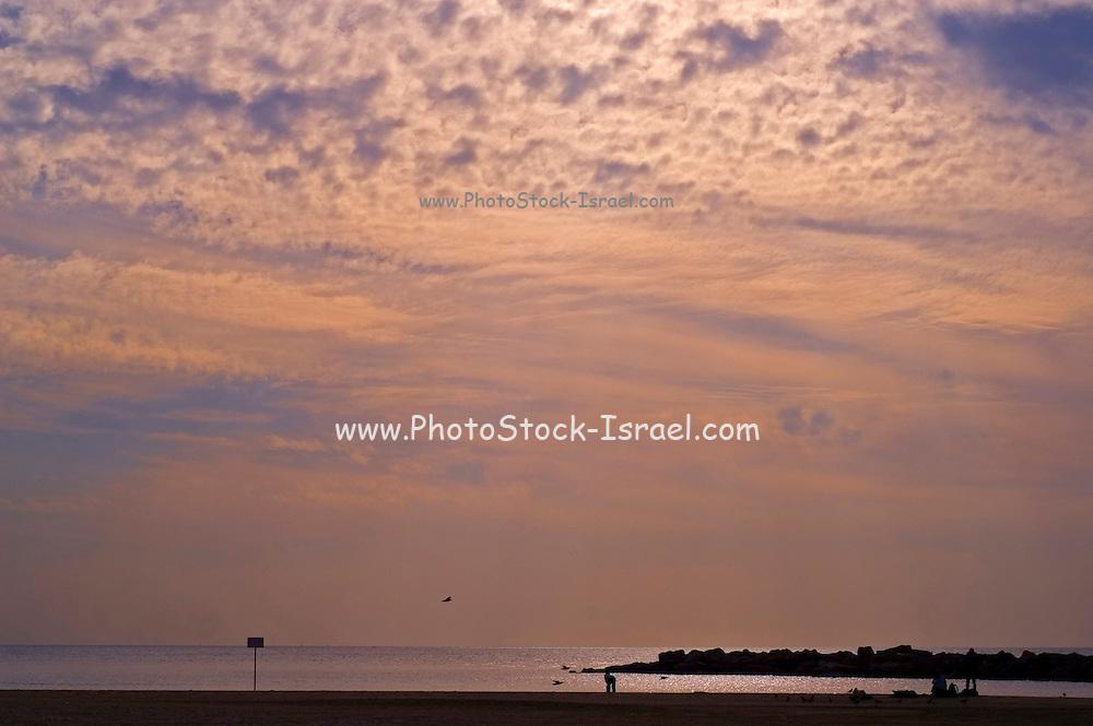 Israel, Tel Aviv, The beach at dusk