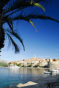 Korcula old town, viewed from the West, view framed with palm tree fronds.
