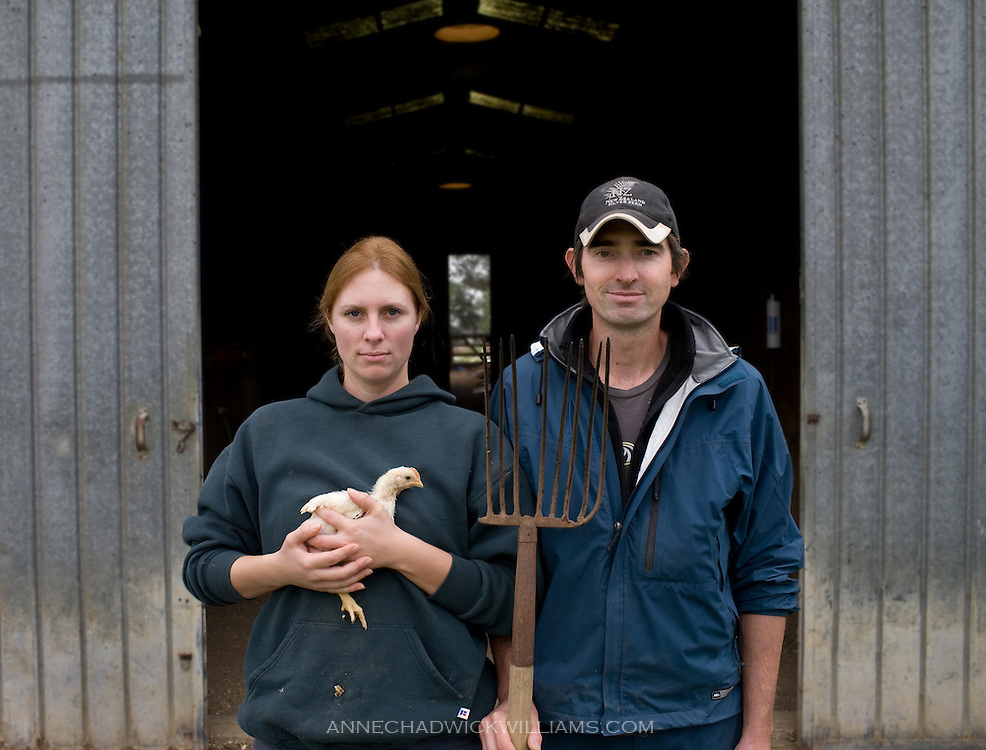 Farmers Kristy Levings, 29, and Brian Douglass, 31, raise their Cache Creek chickens In the pasture on October 21, 2009.