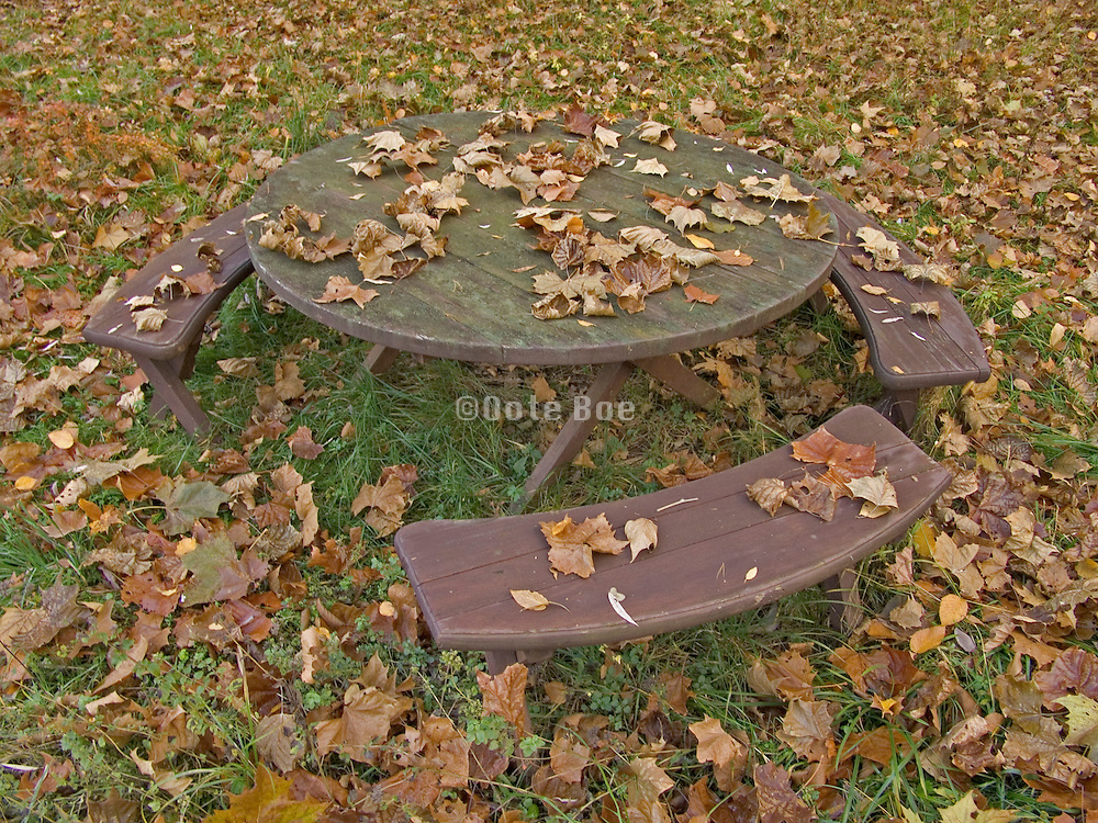 round table with benches in autumn setting