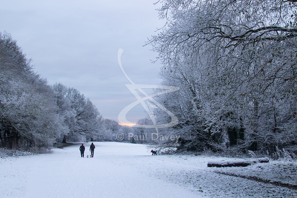 Hampstead Heath, London, January 17th 2016. Runners and dog walkers enjoy the early morning snow on Hampstead heath in London, where about an inch and a half fell overnight. . ///FOR LICENCING CONTACT: paul@pauldaveycreative.co.uk TEL:+44 (0) 7966 016 296 or +44 (0) 20 8969 6875. ©2015 Paul R Davey. All rights reserved.