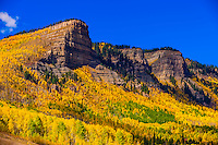 Fall color, Needles (north of Durango), San Juan Mountains, southwest Colorado USA.