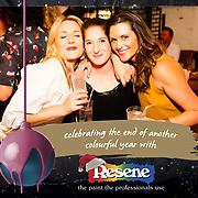 Resene Xmas Party 2017