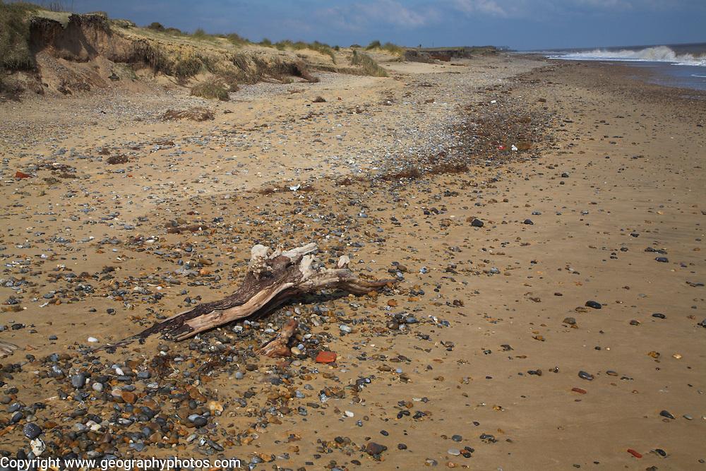 Beach, Benacre, national nature reserve, Suffolk, England