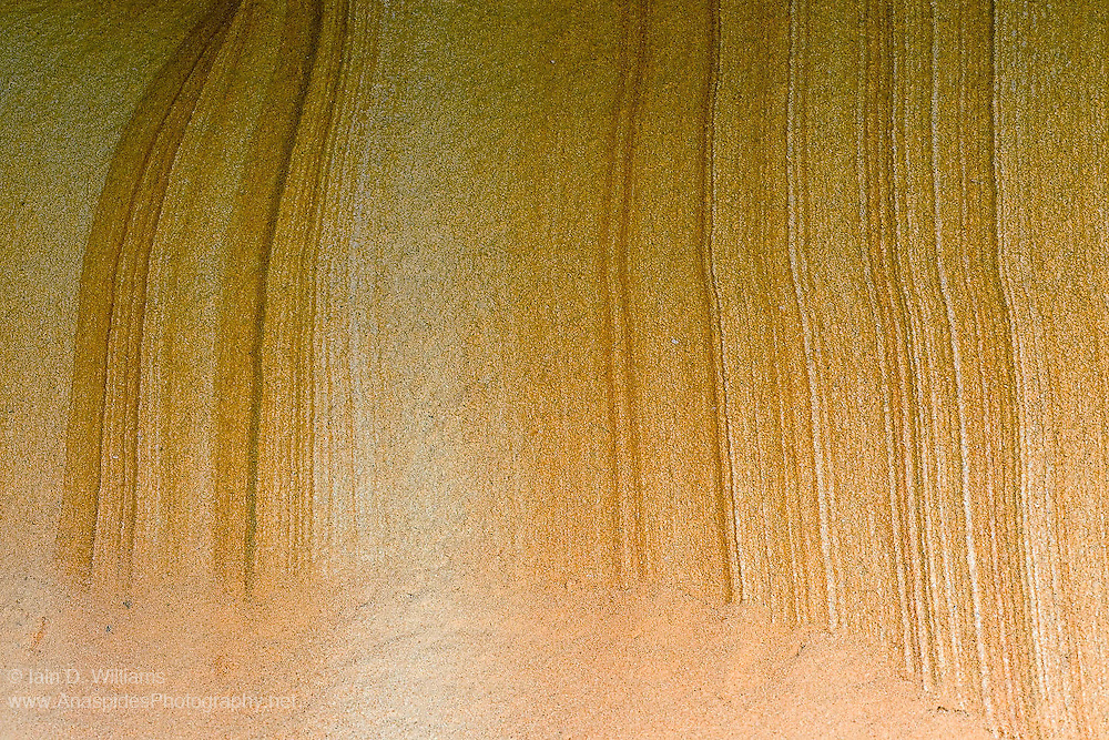 Iron Staining Lamination in Triassic Sandstone - Tasmania, Australia