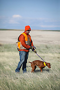 SHOT 5/9/20 8:49:31 AM - Various pointing breeds compete in the Vizsla Club of Colorado Licensed Hunt Test Premium at the Rocky Mountain Sporting Dog Club Grounds in Keenesburg, Co. (Photo by Marc Piscotty / © 2020)