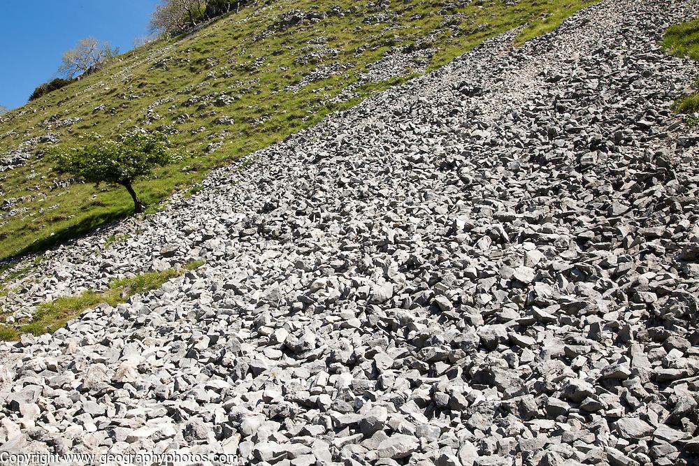 Scree slope of loose weathered rock, Gordale Scar carboniferous limestone gorge, Yorkshire Dales national park, England, UK