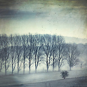 Rural landscape on a frosty and foggy late winter morning - textured photograph<br /> REDBUBBLE products: http://rdbl.co/2iHYljP