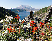 Washington: Mount Saint Helens