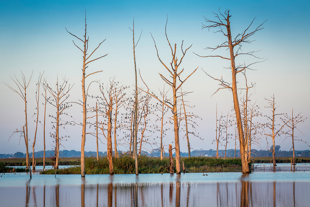 Poverty Point Reservoir State Park encompasses a 2,700-acre, man-made lake. The park offers visitors great fishing and watersport activities.