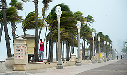 A man stands along palm trees with blowing winds and threatening skies in anticipation for Hurricane Irma, in Hollywood, Fla., Saturday, September 9, 2017. THE CANADIAN PRESS/Paul Chiasson