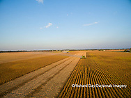 63801-09214 Soybean Harvest, John Deere combine harvesting soybeans - aerial - Marion Co. IL