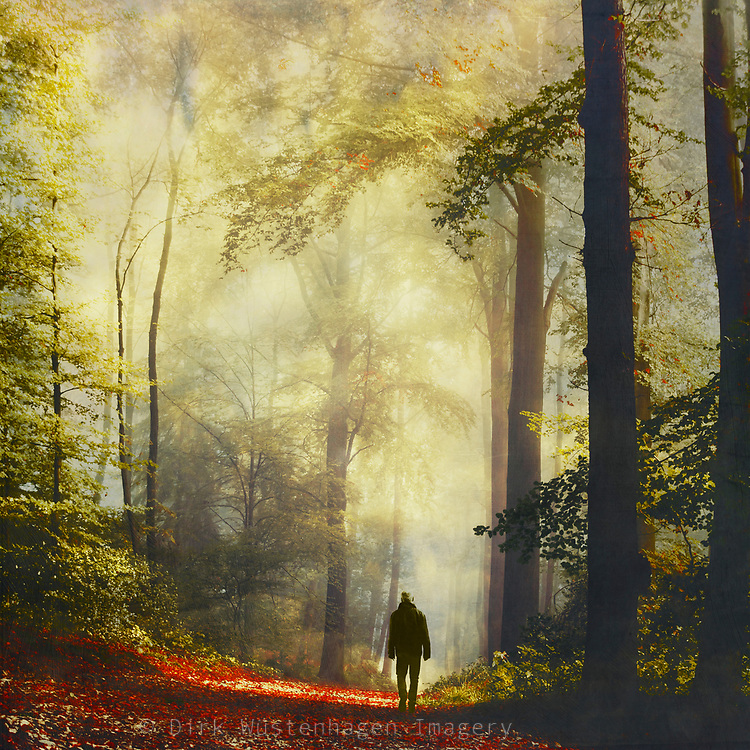 Man on a forest path in morning light - photograph edited with texture overlays