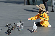 Child (6 years old) feeding the pigeons and a seagull. Sydney, Australia