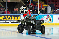 KELOWNA, BC - NOVEMBER 6:  Kelowna Rockets' mascot Rocky Raccoon rides his Polaris Sportsman quad onto the ice at the beginning of the game against the Victoria Royals at Prospera Place on November 6, 2019 in Kelowna, Canada. (Photo by Marissa Baecker/Shoot the Breeze)