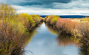 Blitzen River flows gently through the Malheur National Refuge in Oregon as new spring growth brings out color in the refuge