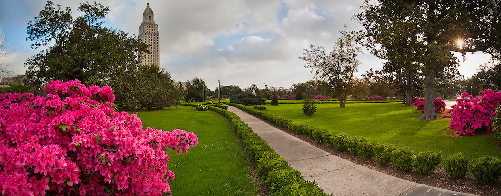 Azaleas bloom on the Capitol grounds of the Louisiana State Capitol in Baton Rouge, Louisiana.