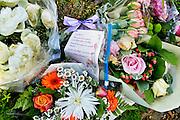 Nederland, Zeddam,  25-6-2015De Padevoorsteallee waar onlangs een moord op een oudere vrouw plaatsvond. Het was waarschijnlijk een familiedrama.FOTO: FLIP FRANSSEN/ HOLLANDSE HOOGTE