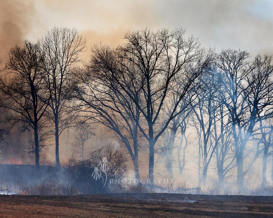 A hazy shroud of smoke envelopes the savanna during a controlled burn.