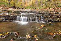 Clifty Creek in Fall, Clifty Falls State Park, Madison, Indiana