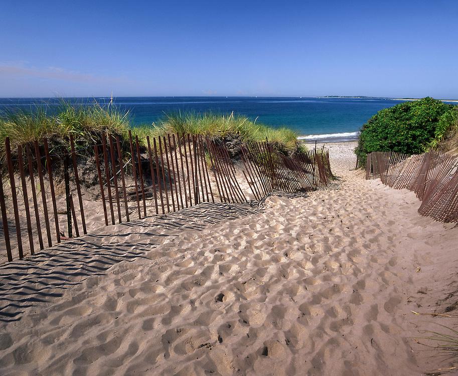 Path to beach & drift fence, American beach grass & harbor view, Watch Hill, RI