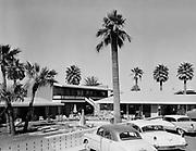 "0301-361A. ""Sandman Motel"" 2120 West Van Buren, Phoenix, Arizona, 1956 license plate on cars"