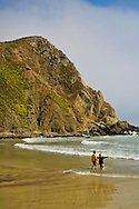 Young boys playing on sand and waves below coastal cliff at Pfeiffer Beach, Big Sur Coast, Monterey County, California