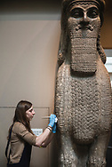 A worker at the British Museum in London works on the sculpture of a winged bull (lamassu) from the Assyrian city of Nimrud. <br /> <br /> (May 4, 2018)