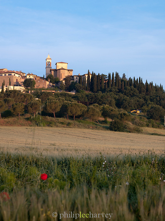 Rural countryside in Umbria in the morning, under the hilltop village Solomeo in Italy