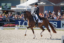 Brouwer Kirsten, NED, Sultan Des Paluds<br /> Longines FEI/WBFSH World Breeding Dressage Championships for Young Horses - Ermelo 2017<br /> © Hippo Foto - Dirk Caremans<br /> 05/08/2017