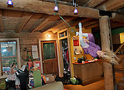 Linnea Henrikson, 7, swings across the family living room as her sister Robin, 5, plays on a piano they have just bought. The rope swing is centrally located in their log home in Grand Marais, MN so the girls can swing on it, rain or shine.
