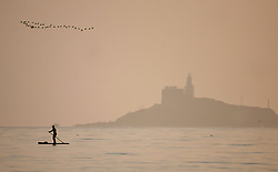 © Licensed to London News Pictures. 29/11/2020. Swansea, UK. A paddle boarder is pictured in the sea passing Mumbles head off the coast of Swansea followed by a flock of birds, at the end of beautiful day in Wales and across the UK. Photo credit: Robert Melen/LNP