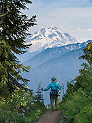 A hiker views Glacier Peak on the Green Mountain trail in Mount Baker-Snoqualmie National Forest, accessible from the Mountain Loop Highway, Washington, USA. Glacier Peak, which rises to elevation 10,541 feet in Glacier Peak Wilderness, is the most isolated of the five major stratovolcanoes (composite volcanoes) of the Cascade Volcanic Arc in Washington. Glacier Peak formed during the Pleistocene epoch (about 1 million years ago) and is one of the most active of Washington's volcanoes, erupting explosively five times in the past 3,000 years.