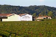 Vineyard. Winery building. Chateau Juguet. Saint Emilion, Bordeaux, France