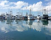 San Diego Tuna Fleet reflected in San Diego Bay