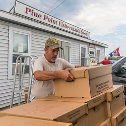 Co-op employee Jeff Germano loads lobsters onto a truck at the Pine Point Fisherman's Co-op in Scarborough, Maine.