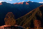 Lagodekhi National Park