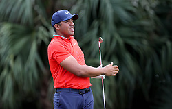 February 28, 2019 - Palm Beach Gardens, Florida, U.S. - Jhonattan Vegas watches his shot on the par 3, 7th hole during the first round of the Honda Classic Thursday at PGA National Resort and Spa in Palm Beach Gardens, February 28, 2019. Vegas made a birdie on the hole and finished the first round 6 under par. (Credit Image: © Allen Eyestone/The Palm Beach Post via ZUMA Wire)