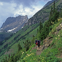Hikers trek along the Highline Trail in Montana's Glacier National Park.  The mountain In front of them is The Garden Wall.