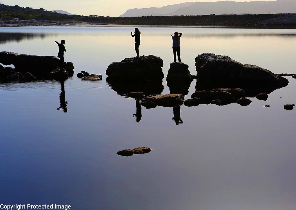Red Hills Reserve, South of Cape Town, South Africa.<br /> Photo by Shmuel Thaler <br /> shmuel_thaler@yahoo.com www.shmuelthaler.com