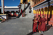 Young monks talk shortly after finishing morning prayers at Thiksey Monastery in Ladakh, October 2011.