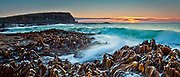 Sunrise and offshore waves greet the kelp at Curio Bay. A coastal panoramic of the Catlins, New Zealand.